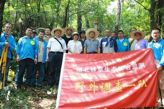 湖北省林草生态综合监测评价野外调查正式启动