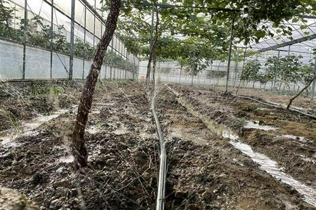 湖北再添10个节水型社会建设达标县(市、区)