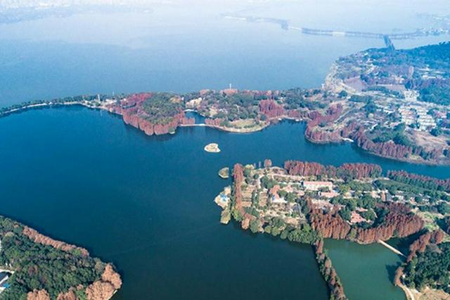 武汉探索设置非临水区域河湖长综合管护水环境