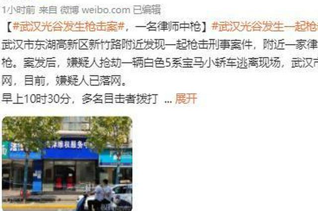 武汉律师遭枪击身亡案:嫌犯疑因败诉而报复行凶