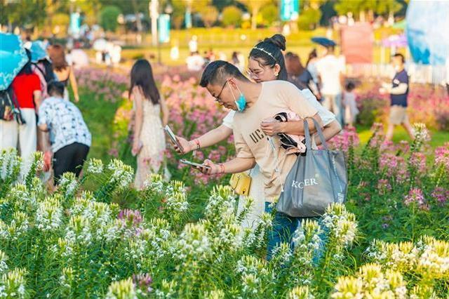 国庆假期第二天湖北旅游市场人气旺