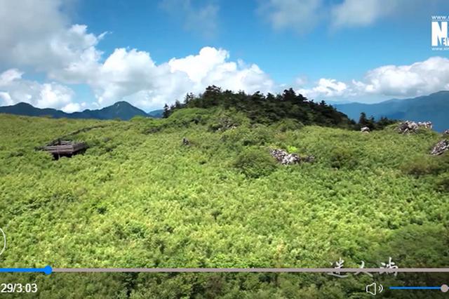 神农架山水秘境穿越四季而来 每一帧都惊艳