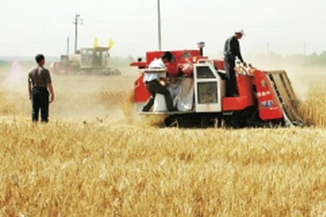 湖北出台规划 5年内粮油加工业规模突破2600亿元