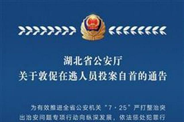 """剑指""""毒枪黄赌诈"""" 湖北省发通告敦促在逃人员自首"""