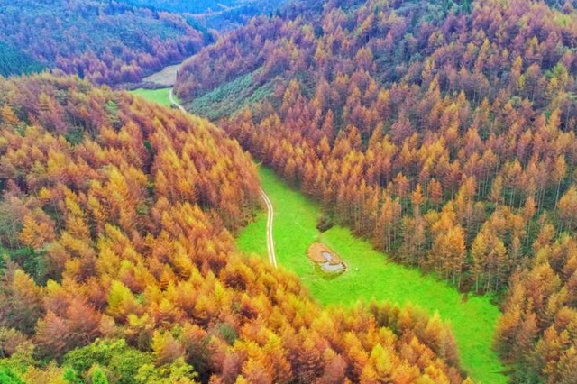 湖北恩施大峡谷:层林尽染 缤纷绚丽