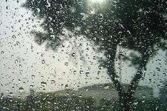 聚焦湖北史上最长阴雨天