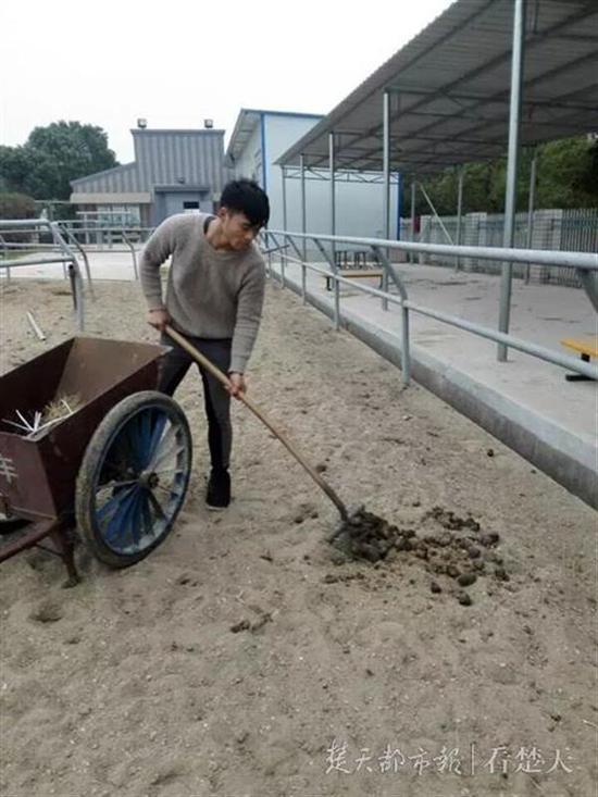 朱粮剩在马城打扫卫生