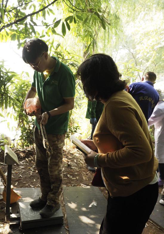 又到秋防季 武汉动物园鸟儿们排队打疫苗