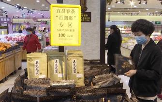 宜昌商贸企业抱团卖春茶 线上线下全面开花