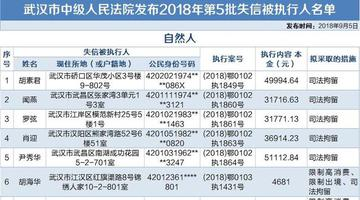 """武汉公布最新""""老赖""""名单"""