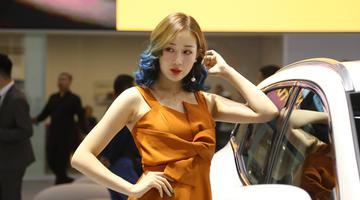 武汉国际车展开幕 新车光彩夺目美女如云
