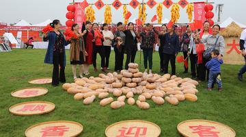 """2020年庆祝""""中国农民丰收节""""活动在江夏启动"""