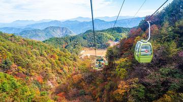 漫山红遍层林尽染 跟着摄影达人赏红叶