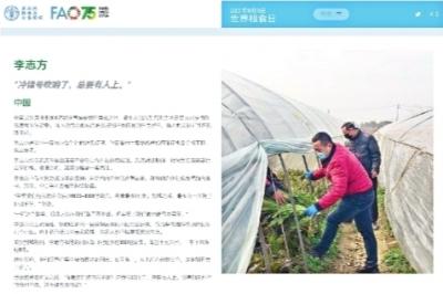 联合国粮食及农业组织给李志方的颁奖介绍。