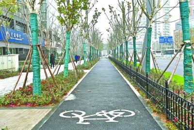 三阳路改造提升后的绿道