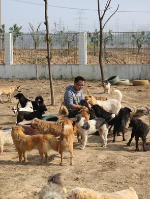时隔5年回访武汉小动物保护协会