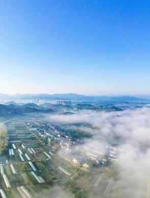 宜昌现云海雾气升腾如仙境