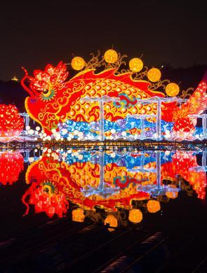 2020武汉东湖灯会开幕 万盏花灯流光溢彩