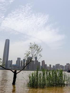 长江武汉水位逼近设防水位