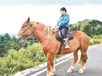 这匹名贵观赏马如今只能活在人们的记忆中