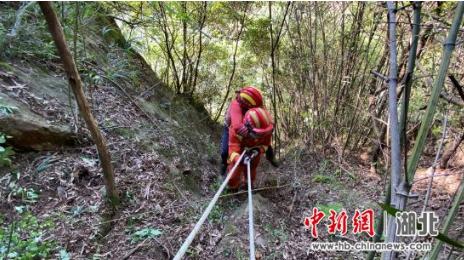 湖北十堰:女子挖笋不慎掉落山崖 消防紧急救援