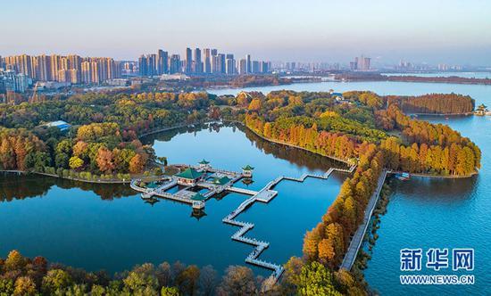 ▲这是2019年3月3日拍摄的武汉东湖绿道(无人机拍摄)。新华社记者 肖艺九 摄