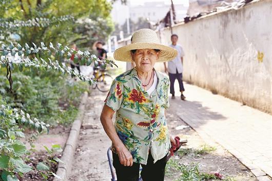 图为:72岁的郑菊先婆婆半年来义务清运垃圾