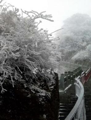 寒潮来袭 武当山景区现绝美雾凇景观