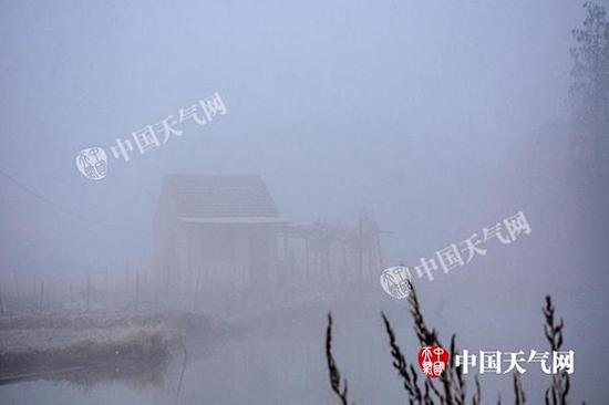 近日,江苏无锡气温较低,大雾弥漫,水边呈现另一番意境。斗山星辰 摄
