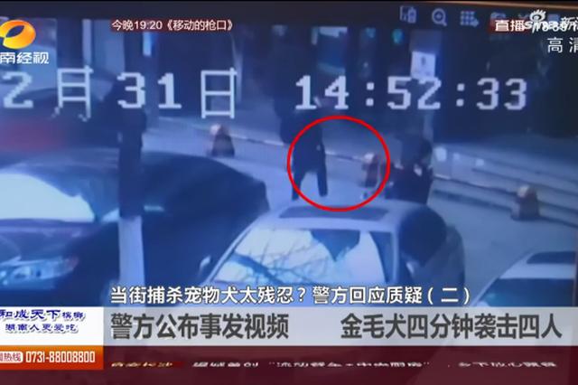警方公布事发视频 金毛犬四分钟袭击四人