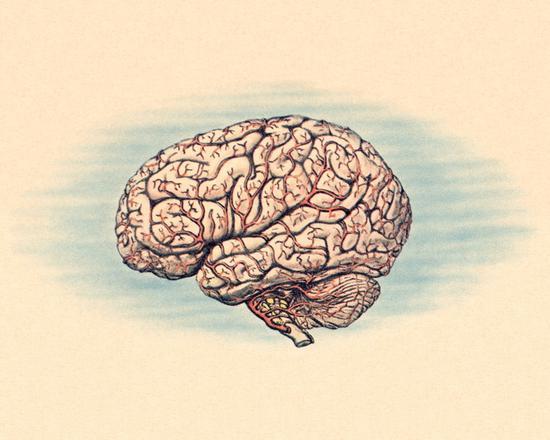 这样睡觉能清除大脑垃圾