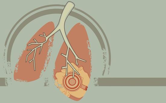如何给肺排毒洗澡