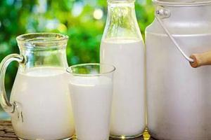 每天喝多少牛奶补钙还不胖