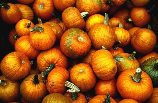 秋季吃南瓜三大益处