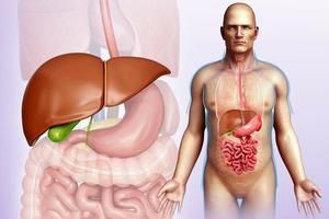 肝癌早期征兆都有啥|肝癌|脂肪肝|抗癌