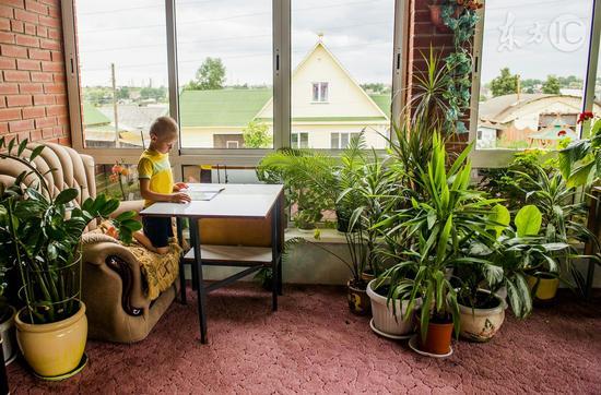 阳台种上三盆花 全家药费不用花