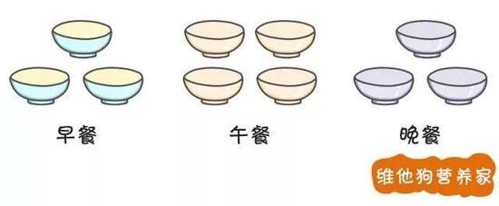 PS:这里的饭碗不代表吃的分量,只代表三餐的比例分配哦。