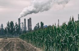 为何青山绿水的农村肿瘤发病率升高