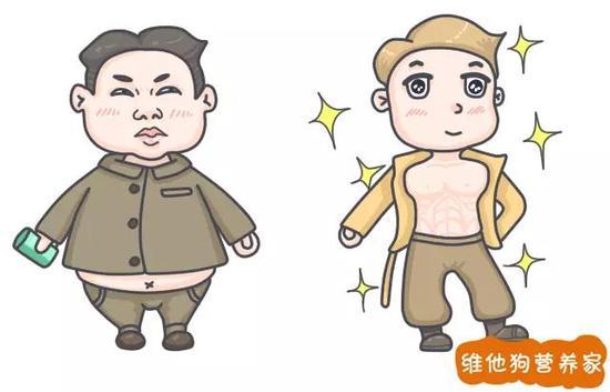 """(左边""""啤酒肚"""",右边""""公狗腰"""")"""