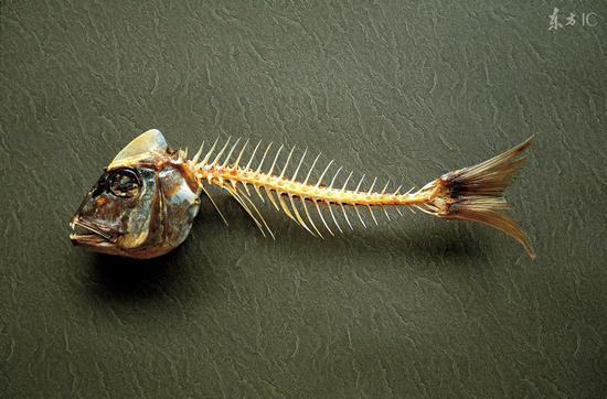 鱼刺卡食道怎么办 医生:这些动作不要做
