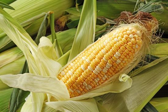 营养专家推荐玉米升级吃法