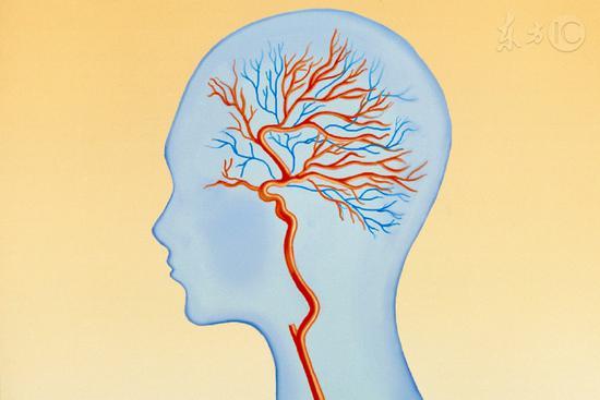 威胁健康的第一杀手不是<a href='http://health.sina.com.cn/disease/ku/01048/' _fcksavedurl='http://health.sina.com.cn/disease/ku/01048/' target='_blank'>癌症</a>而是它!做好这8点,能降低风险