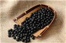 黑色食物营养丰富抗衰老防癌
