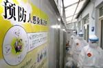 如何从容应对H7N9流感