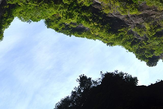 河北森林面积达9000万亩 覆盖率达32%