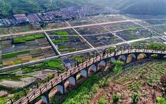 河北农村年内将有大变化