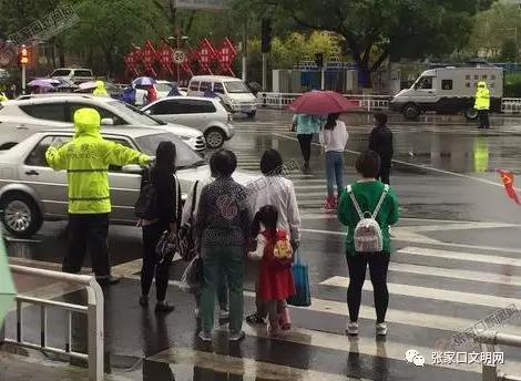 在至善街与长青路交叉路口,个别行人与车辆抢道行走。