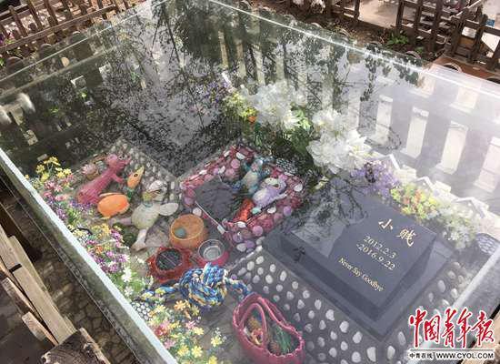 """北京六环外一处""""宠物墓地""""。中国青年报·中青在线记者 玄增星/摄"""