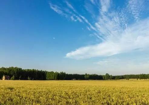 到2018年底,河北将完成权属清晰、无争议农垦国有土地确权登记发证任务