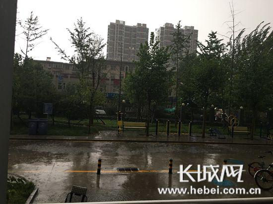 石家庄地区降中雨。李丽钧 摄